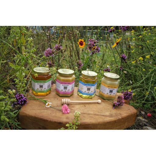 Honey Taster Set